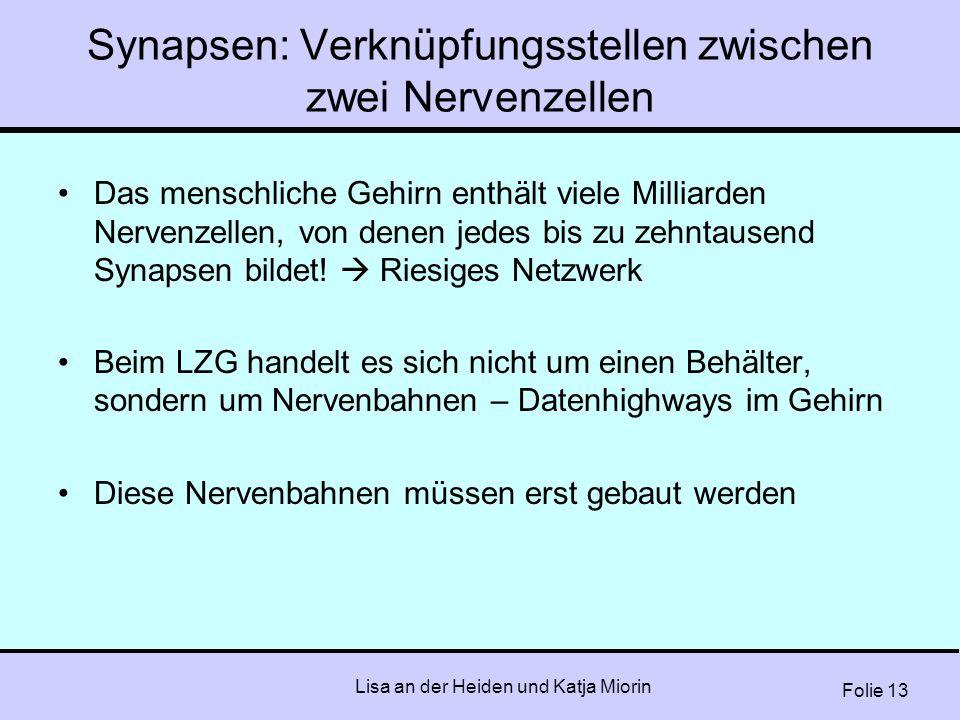 Folie 13 Lisa an der Heiden und Katja Miorin Synapsen: Verknüpfungsstellen zwischen zwei Nervenzellen Das menschliche Gehirn enthält viele Milliarden
