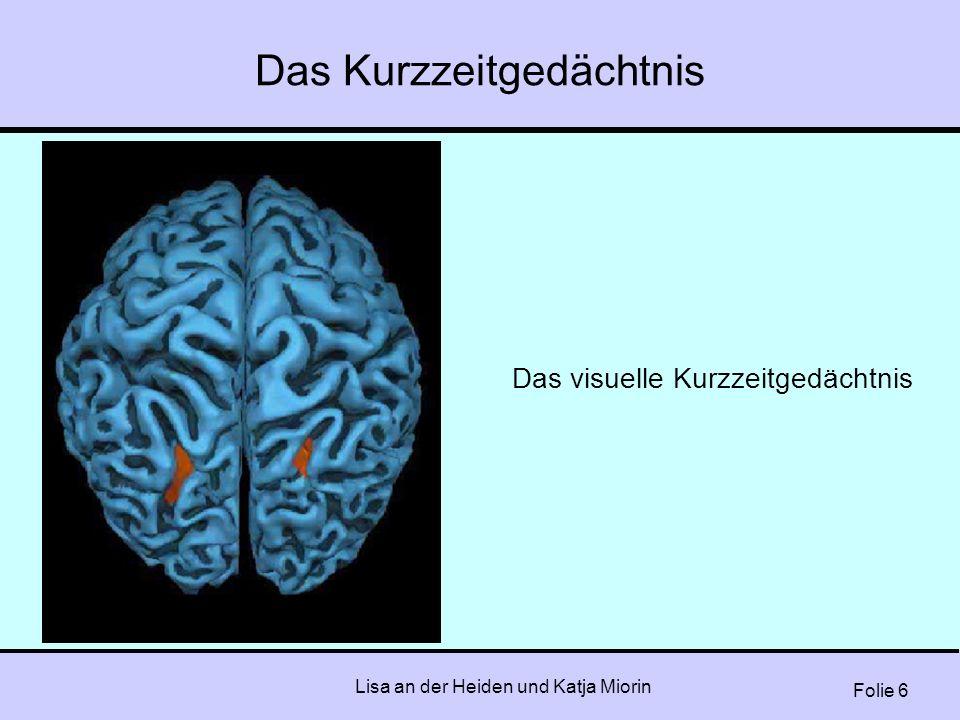 Folie 6 Lisa an der Heiden und Katja Miorin Das Kurzzeitgedächtnis Das visuelle Kurzzeitgedächtnis