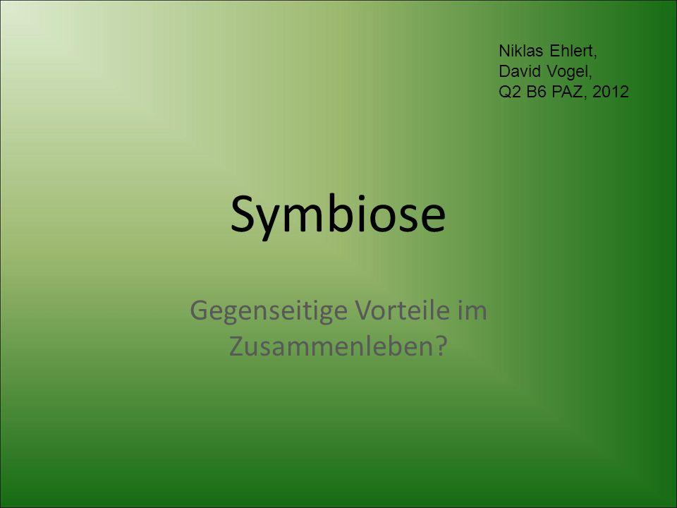 Symbiose Gegenseitige Vorteile im Zusammenleben? Niklas Ehlert, David Vogel, Q2 B6 PAZ, 2012