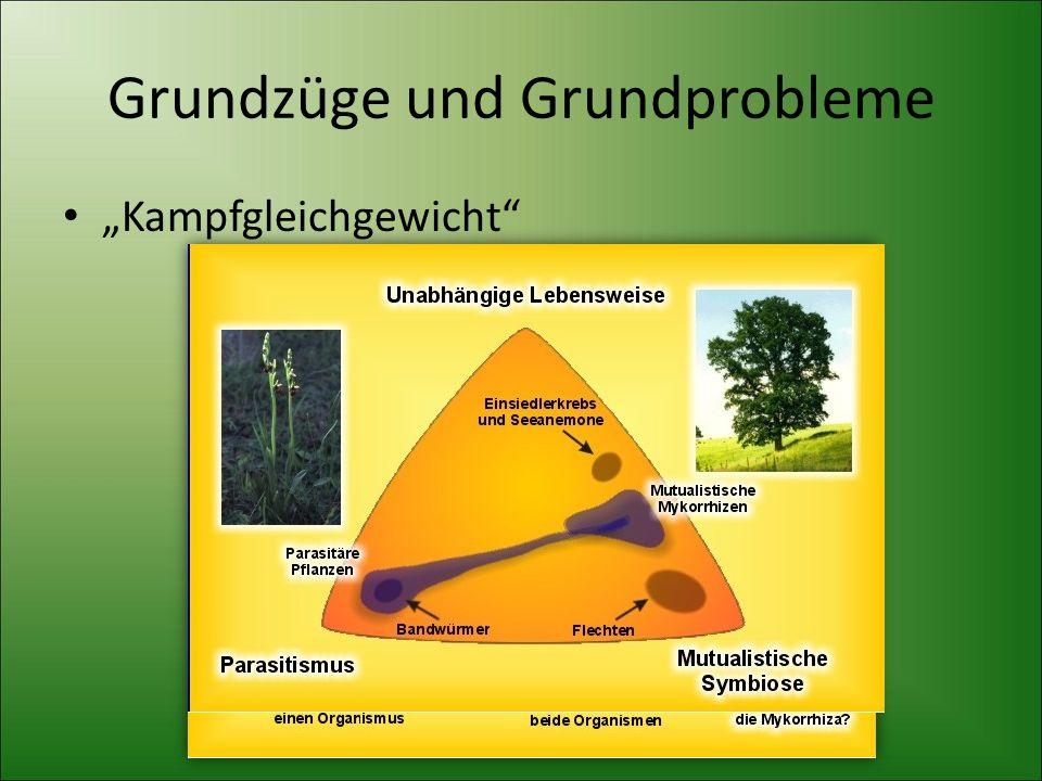 """Grundzüge und Grundprobleme """"Kampfgleichgewicht"""""""