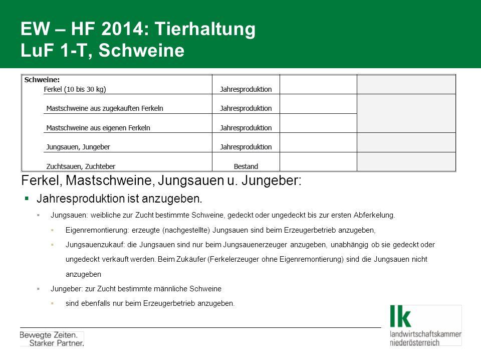 EW – HF 2014: Tierhaltung LuF 1-T, Schweine Ferkel, Mastschweine, Jungsauen u. Jungeber:  Jahresproduktion ist anzugeben.  Jungsauen: weibliche zur