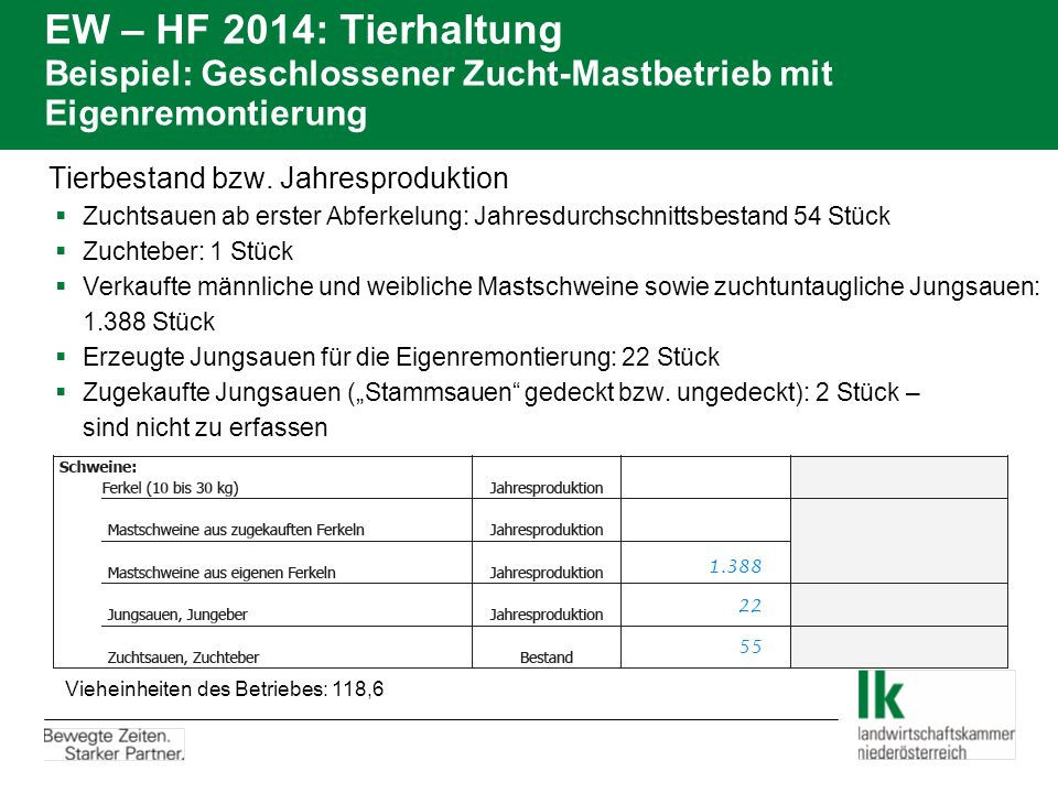 EW – HF 2014: Tierhaltung Beispiel: Geschlossener Zucht-Mastbetrieb mit Eigenremontierung Tierbestand bzw. Jahresproduktion  Zuchtsauen ab erster Abf