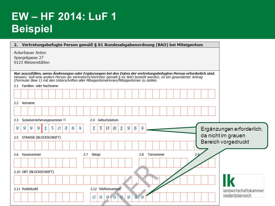 EW – HF 2014: LuF 1 Beispiel Ergänzungen erforderlich, da nicht im grauen Bereich vorgedruckt