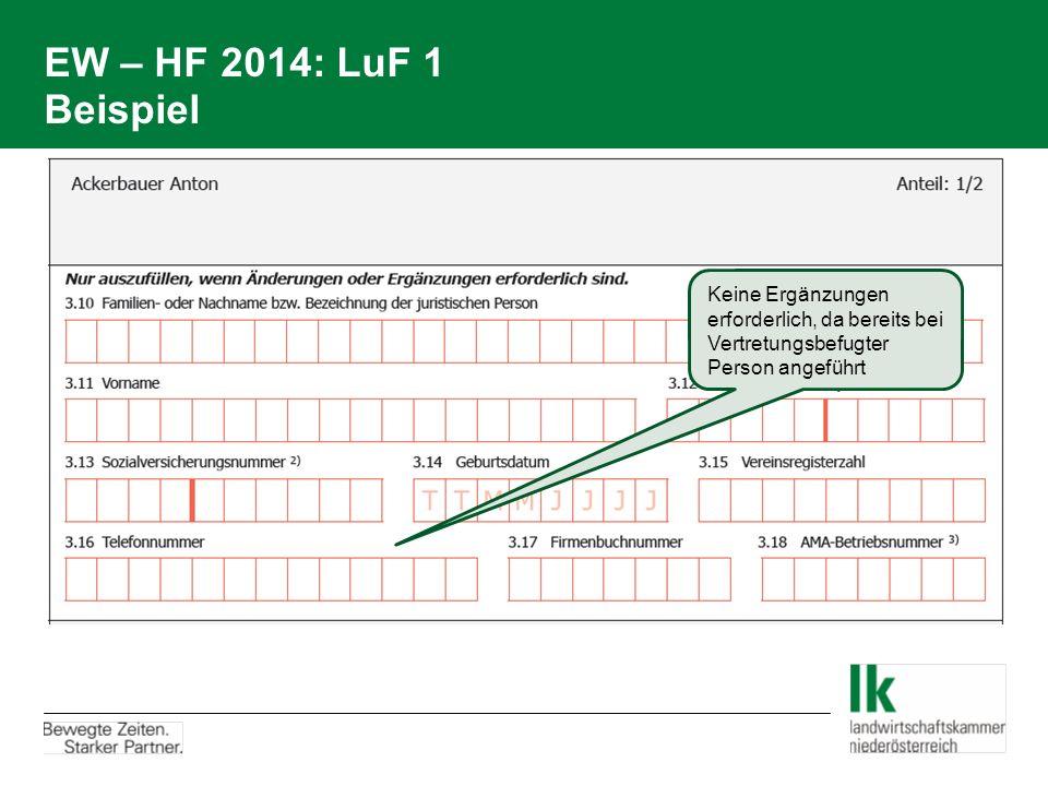 EW – HF 2014: LuF 1 Beispiel Keine Ergänzungen erforderlich, da bereits bei Vertretungsbefugter Person angeführt