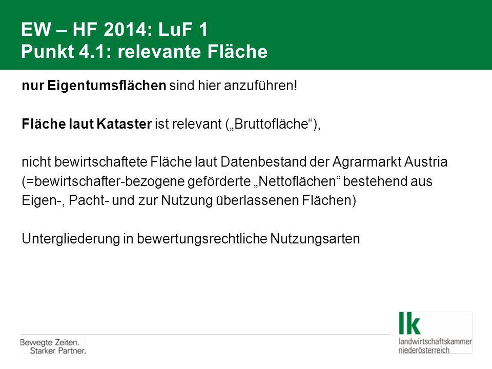 """EW – HF 2014: LuF 1 Punkt 4.1: relevante Fläche nur Eigentumsflächen sind hier anzuführen! Fläche laut Kataster ist relevant (""""Bruttofläche""""), nicht b"""