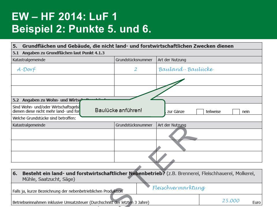 EW – HF 2014: LuF 1 Beispiel 2: Punkte 5. und 6. A-Dorf 2 Bauland - Baulücke Fleischvermarktung 25.000 Baulücke anführen!