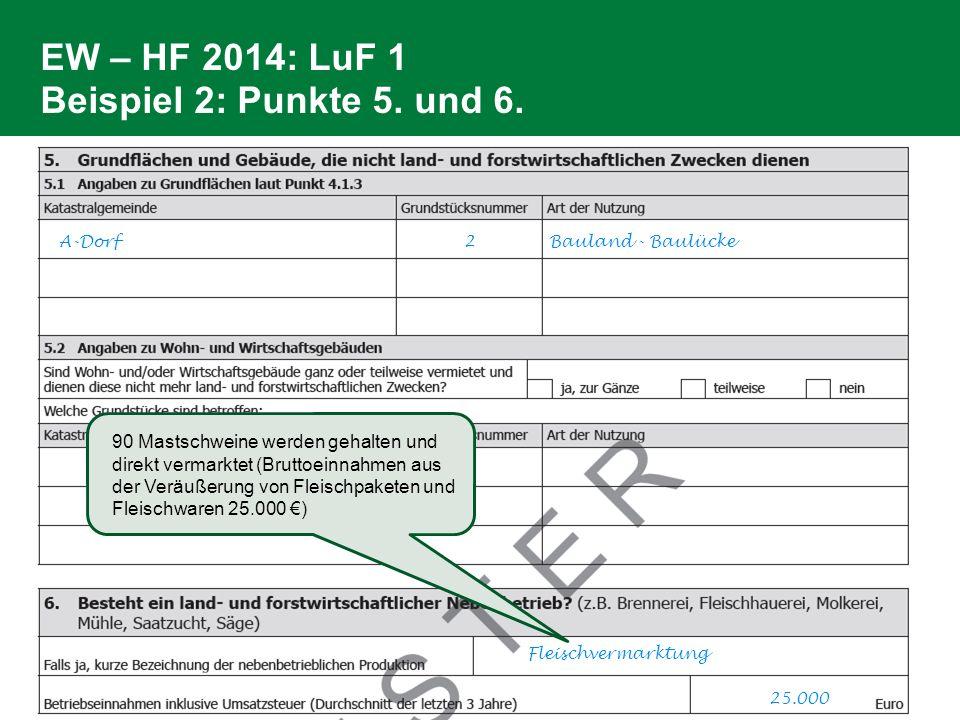 EW – HF 2014: LuF 1 Beispiel 2: Punkte 5. und 6. A-Dorf 2 Bauland - Baulücke Fleischvermarktung 25.000 90 Mastschweine werden gehalten und direkt verm