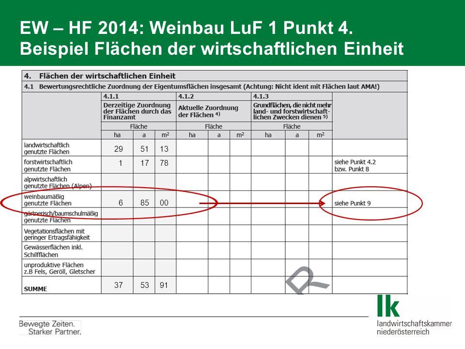 EW – HF 2014: Weinbau LuF 1 Punkt 4. Beispiel Flächen der wirtschaftlichen Einheit 29 51 13 1 17 78 6 85 00 37 53 91