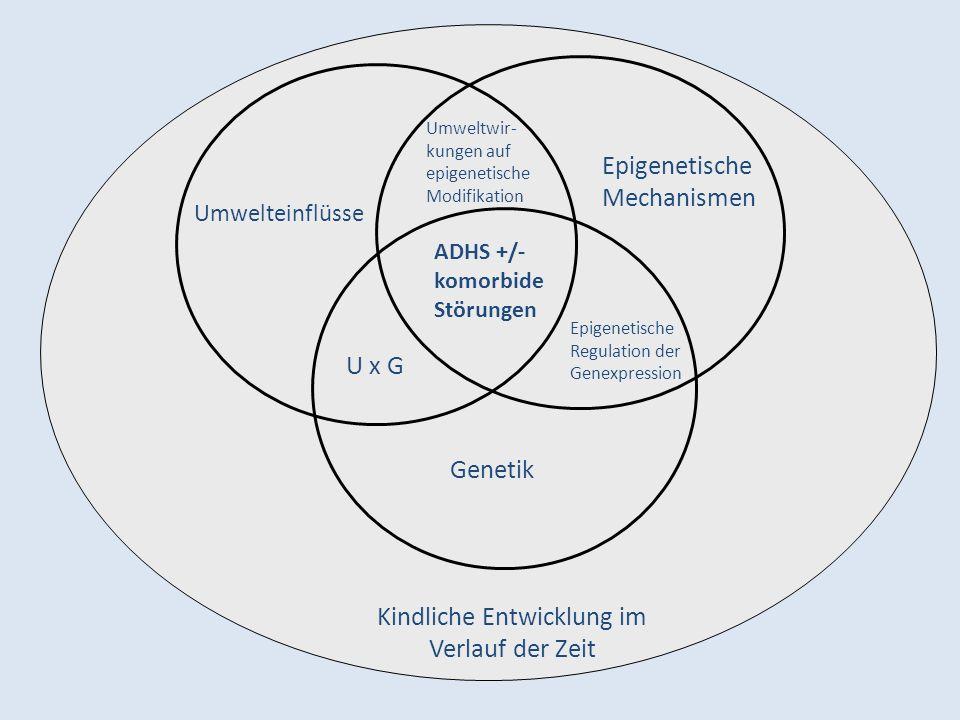 Kindliche Entwicklung im Verlauf der Zeit Genetik U x G Umwelteinflüsse Epigenetische Mechanismen Epigenetische Regulation der Genexpression ADHS +/- komorbide Störungen Umweltwir- kungen auf epigenetische Modifikation