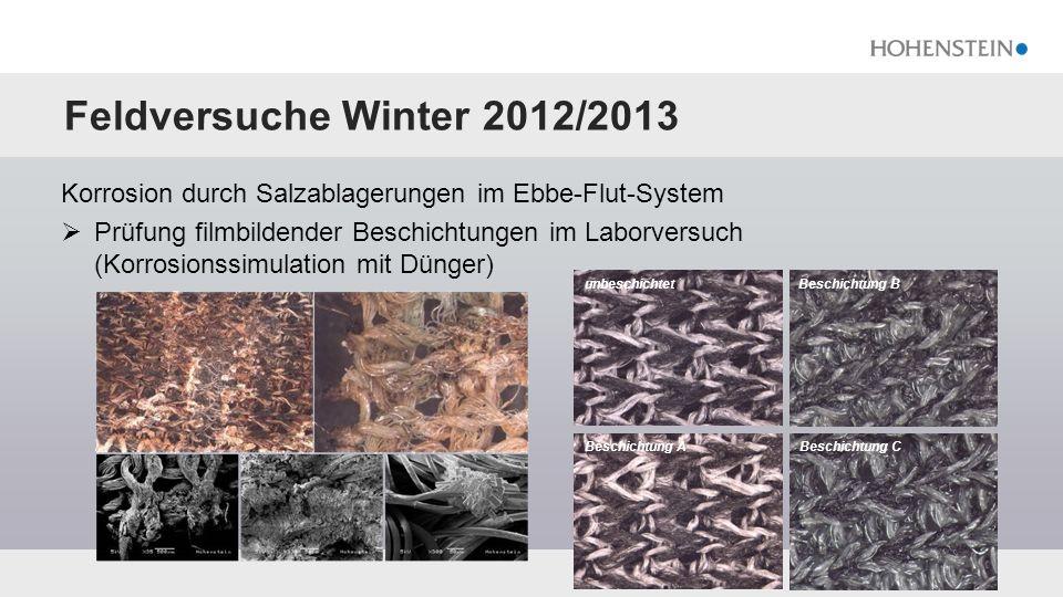 Feldversuche Winter 2012/2013 Korrosion durch Salzablagerungen im Ebbe-Flut-System  Prüfung filmbildender Beschichtungen im Laborversuch (Korrosionss