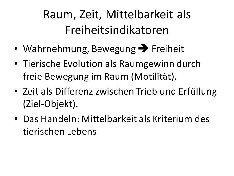Raum, Zeit, Mittelbarkeit als Freiheitsindikatoren Wahrnehmung, Bewegung  Freiheit Tierische Evolution als Raumgewinn durch freie Bewegung im Raum (Motilität), Zeit als Differenz zwischen Trieb und Erfüllung (Ziel-Objekt).