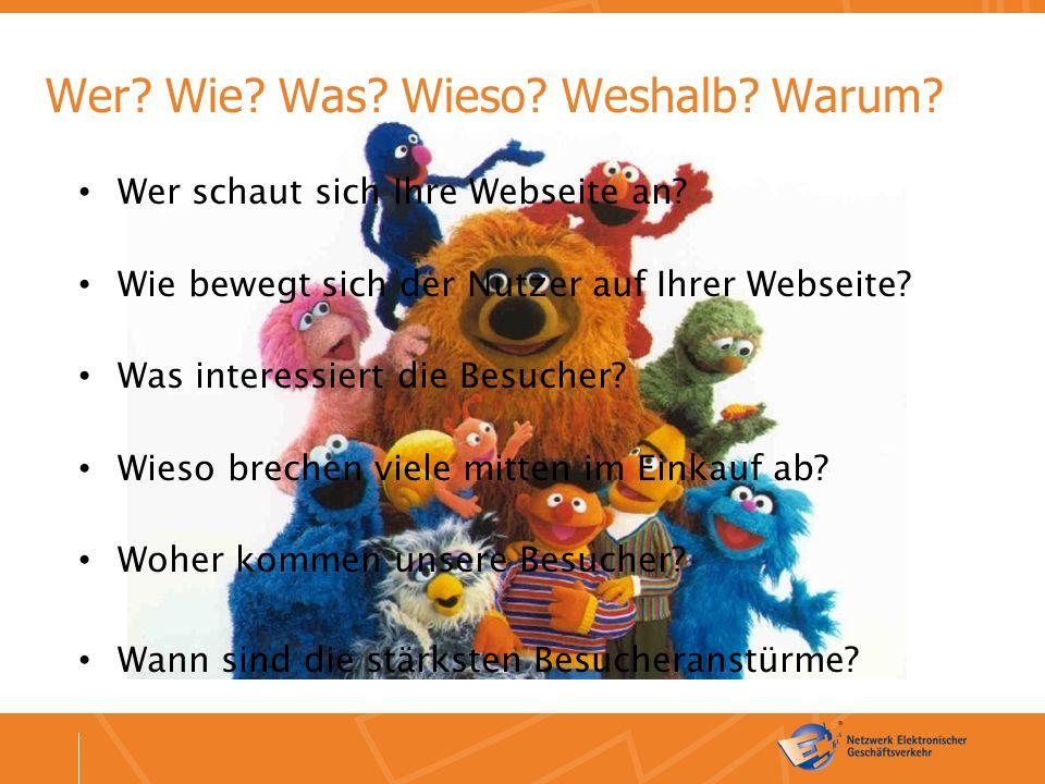 Wer. Wie. Was. Wieso. Weshalb. Warum. Wer schaut sich Ihre Webseite an.