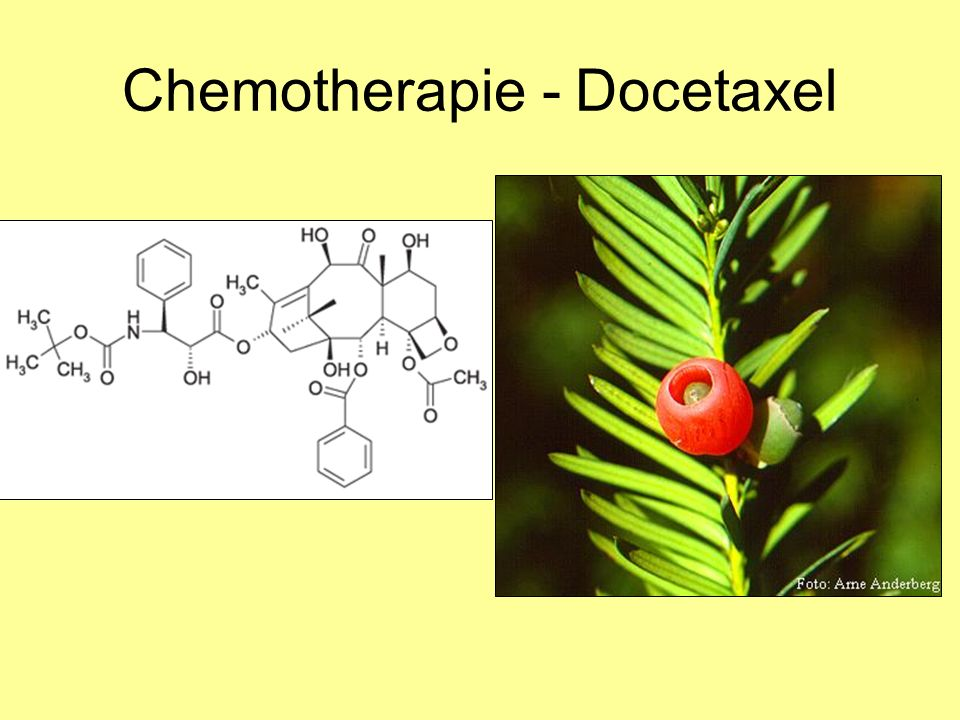 Chemotherapie - Docetaxel