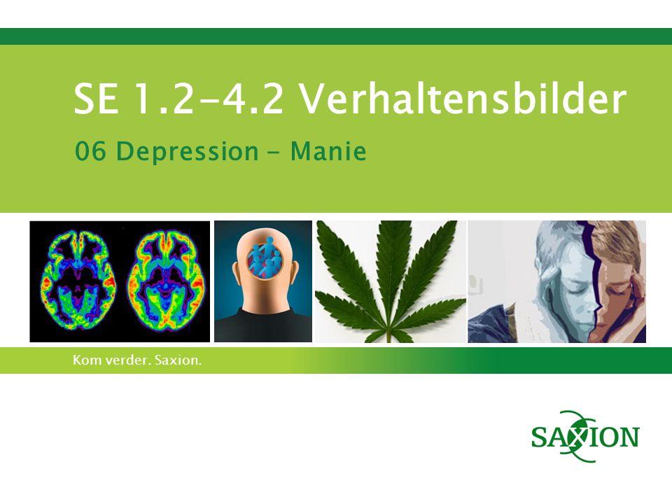 Kom verder. Saxion. SE 1.2-4.2 Verhaltensbilder 06 Depression - Manie