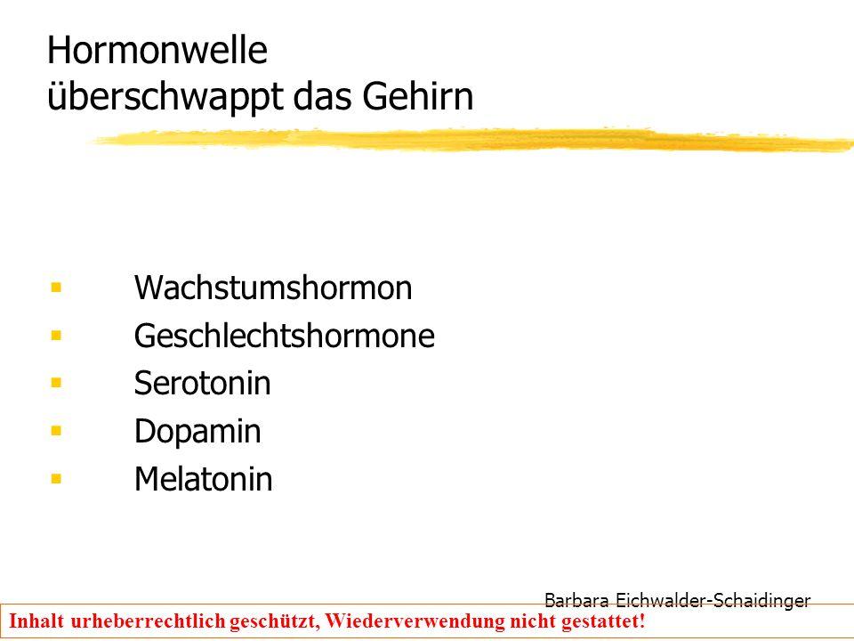 Barbara Eichwalder-Schaidinger Inhalt urheberrechtlich geschützt, Wiederverwendung nicht gestattet! Hormonwelle überschwappt das Gehirn  Wachstumshor