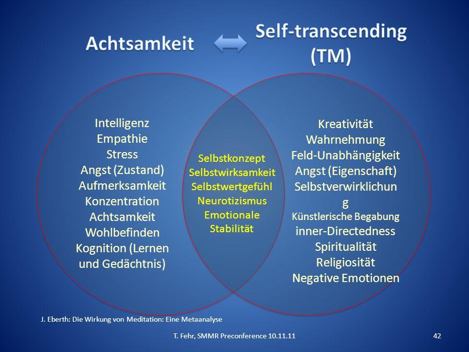 Intelligenz Empathie Stress Angst (Zustand) Aufmerksamkeit Konzentration Achtsamkeit Wohlbefinden Kognition (Lernen und Gedächtnis) Kreativität Wahrnehmung Feld-Unabhängigkeit Angst (Eigenschaft) Selbstverwirklichun g Künstlerische Begabung inner-Directedness Spiritualität Religiosität Negative Emotionen Selbstkonzept Selbstwirksamkeit Selbstwertgefühl Neurotizismus Emotionale Stabilität J.