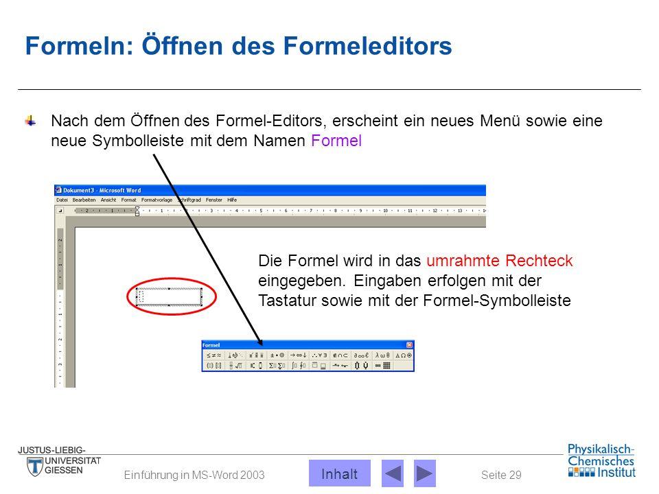 Seite 29Einführung in MS-Word 2003 Formeln: Öffnen des Formeleditors Nach dem Öffnen des Formel-Editors, erscheint ein neues Menü sowie eine neue Symb