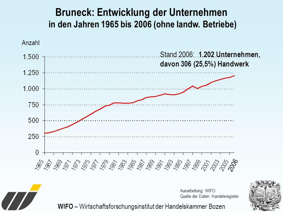 WIFO – Wirtschaftsforschungsinstitut der Handelskammer Bozen Anzahl Ausarbeitung: WIFO Quelle der Daten: Handelsregister Bruneck: Entwicklung der Unte