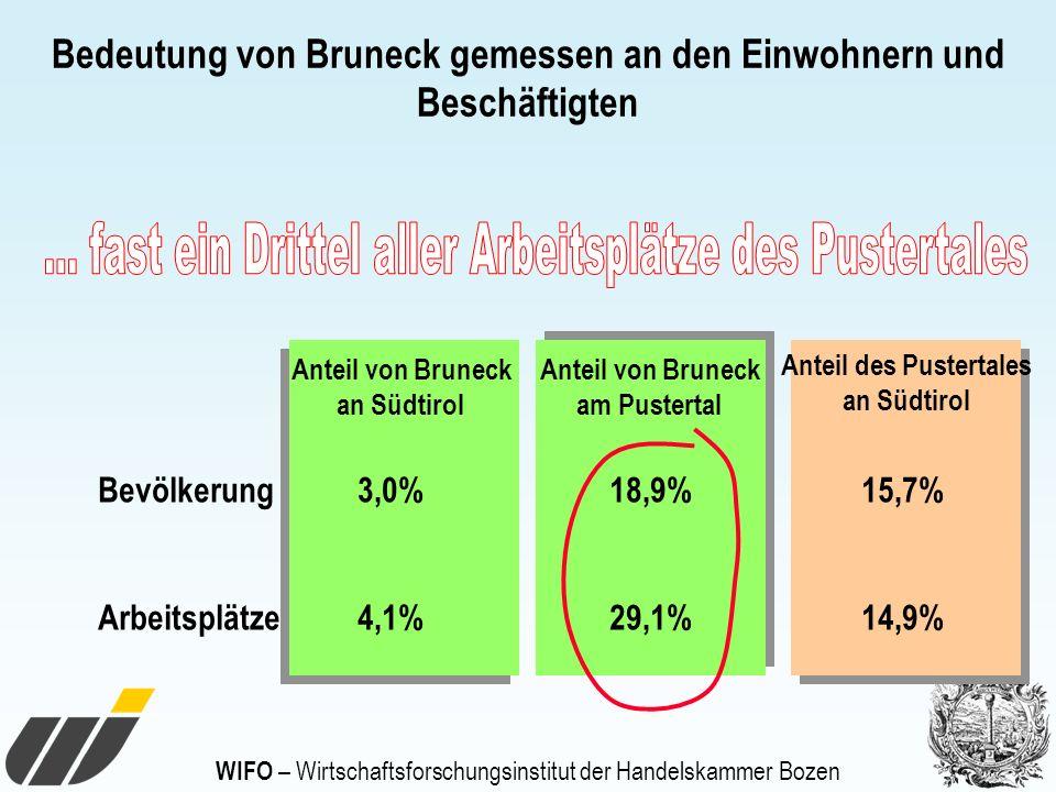 Bedeutung von Bruneck gemessen an den Einwohnern und Beschäftigten Bevölkerung 3,0% 18,9% 15,7% Arbeitsplätze 4,1% 29,1% 14,9% Anteil von Bruneck an S
