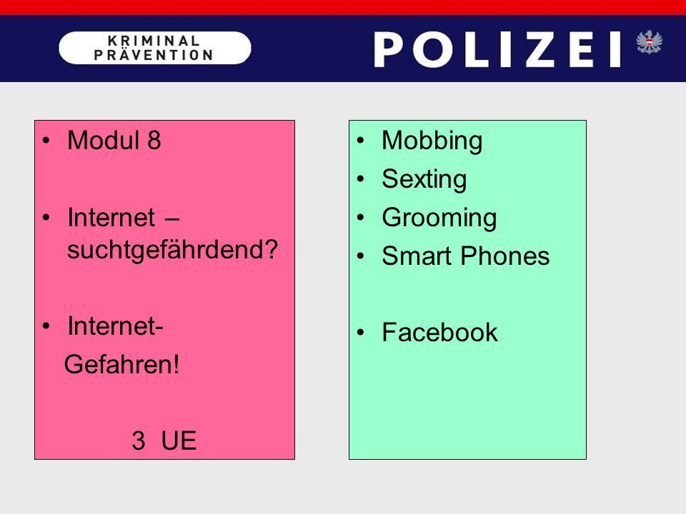 Modul 8 Internet – suchtgefährdend. Internet- Gefahren.