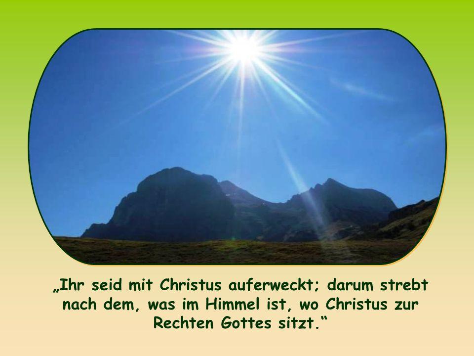 """Das, """"was im Himmel ist , verweist uns auf das Gesetz des Reiches Gottes, das Jesus auf die Erde gebracht hat und an dem wir uns schon jetzt ausrichten sollen."""