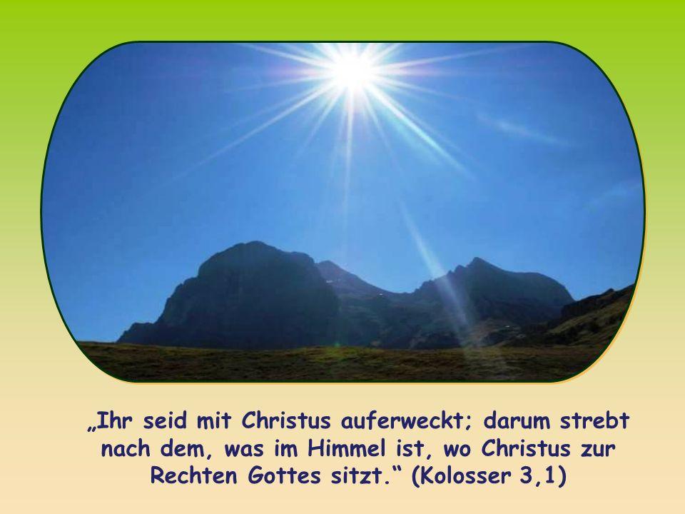 """""""Ihr seid mit Christus auferweckt; darum strebt nach dem, was im Himmel ist, wo Christus zur Rechten Gottes sitzt. (Kolosser 3,1)"""