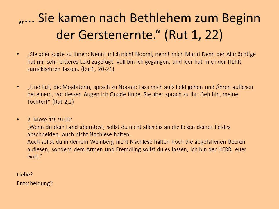 """""""... Sie kamen nach Bethlehem zum Beginn der Gerstenernte."""" (Rut 1, 22) """"Sie aber sagte zu ihnen: Nennt mich nicht Noomi, nennt mich Mara! Denn der Al"""