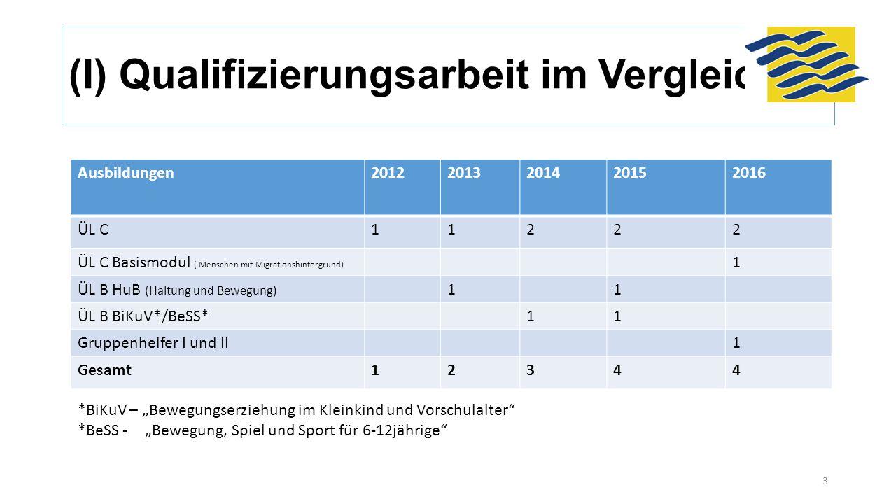 (I) Qualifizierungsarbeit im Vergleich Ausbildungen20122013201420152016 ÜL C11222 ÜL C Basismodul ( Menschen mit Migrationshintergrund) 1 ÜL B HuB (Ha