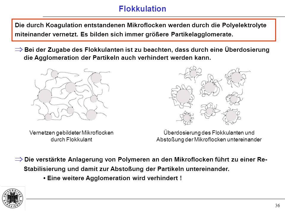 36 Die durch Koagulation entstandenen Mikroflocken werden durch die Polyelektrolyte miteinander vernetzt.