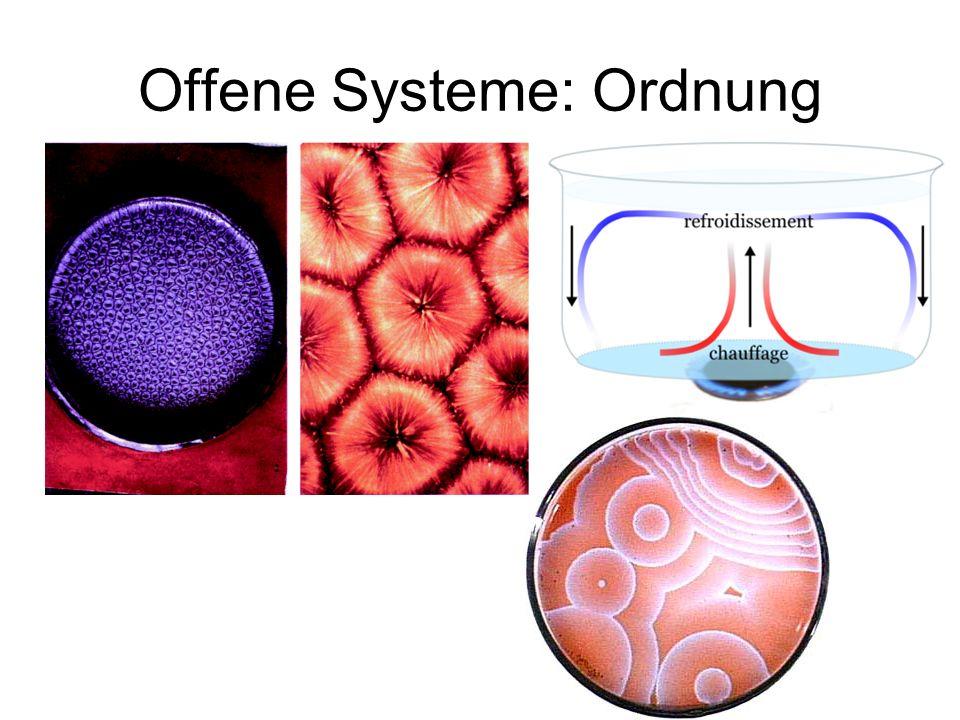 Offene Systeme: Ordnung
