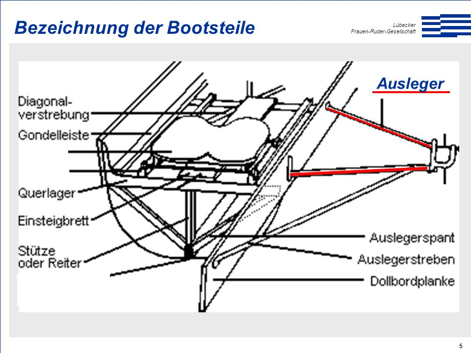 Lübecker Frauen-Ruder-Gesellschaft 26 Manschette Griff Klemmring Blatt Big-Blade Bezeichnung der Teile am Skull