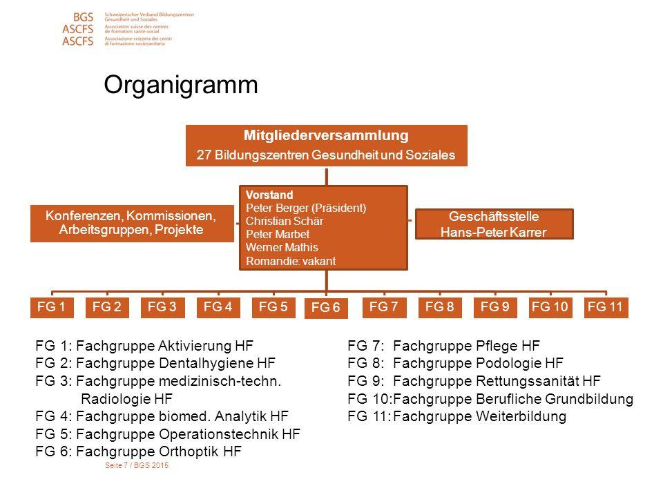 Seite 7 / BGS 2015 Organigramm Mitgliederversammlung 27 Bildungszentren Gesundheit und Soziales FG 1FG 2FG 3FG 4FG 5 FG 6 FG 7FG 8FG 9FG 10FG 11 Konfe