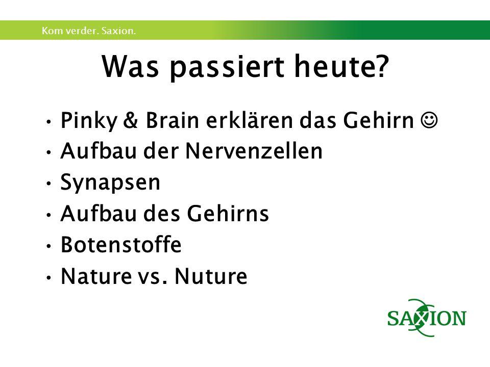 Kom verder. Saxion. Pinky & Brain … Hier das Youtube Video