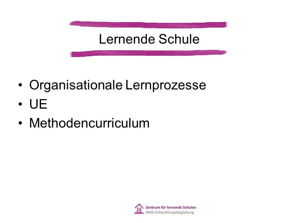 Organisationale Lernprozesse UE Methodencurriculum Lernende Schule
