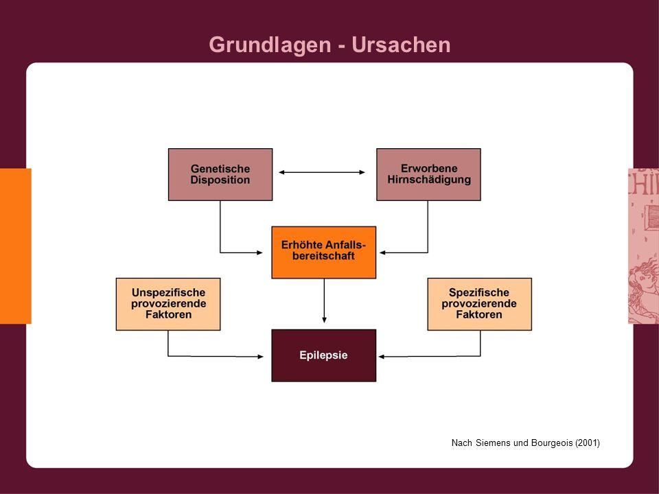 Grundlagen - Ursachen Nach Siemens und Bourgeois (2001)