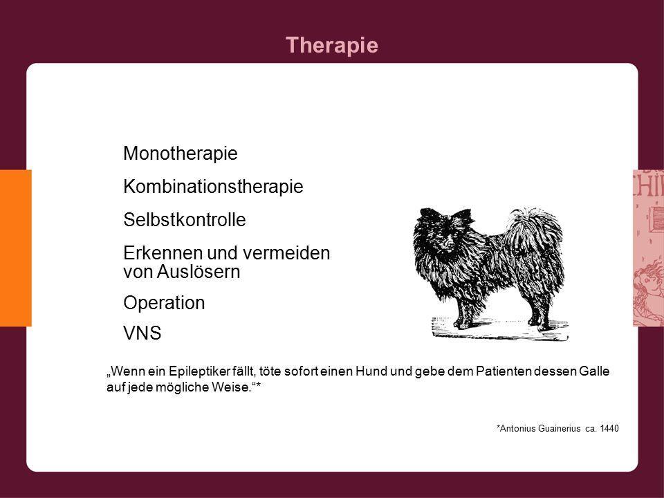 """Therapie """"Wenn ein Epileptiker fällt, töte sofort einen Hund und gebe dem Patienten dessen Galle auf jede mögliche Weise. * *Antonius Guainerius ca."""