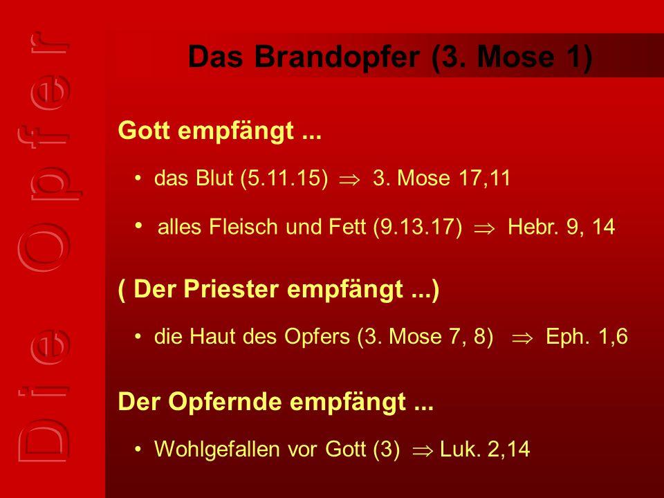 Das Brandopfer (3. Mose 1) alles Fleisch und Fett (9.13.17)  Hebr.