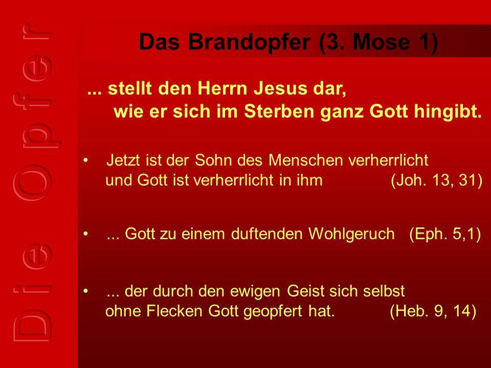 Das Sündopfer (3.Mose 4) für den gesalbten Priester und die ganze Gemeinde wird...