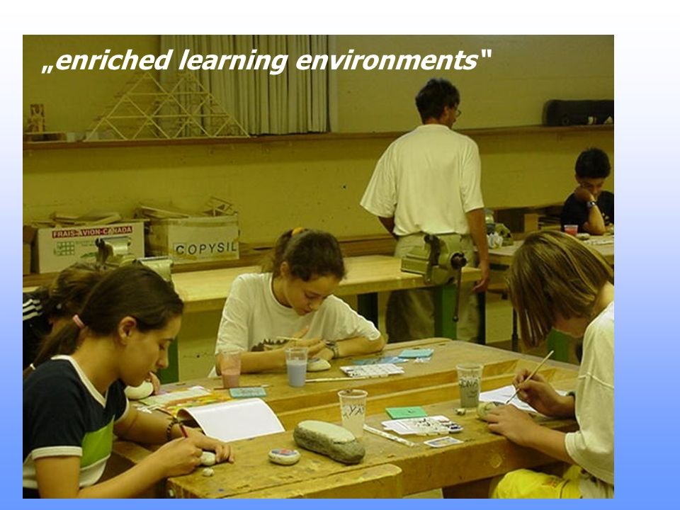"""""""enriched learning environments"""