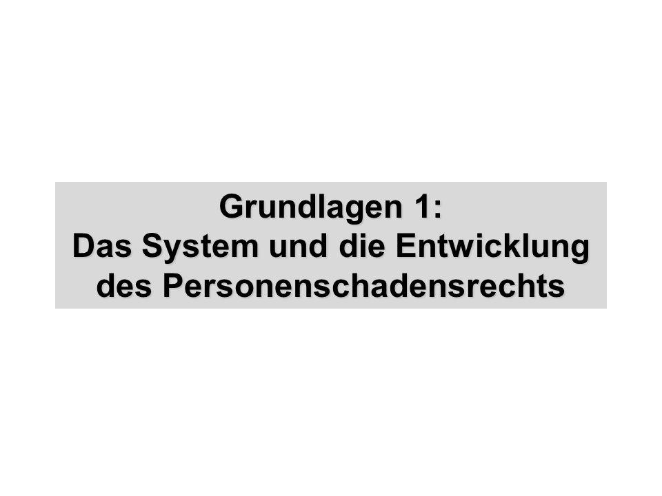 Grundlagen 1: Das System und die Entwicklung des Personenschadensrechts