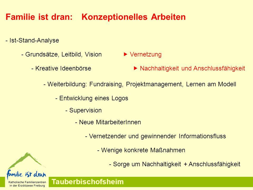 Tauberbischofsheim Familie ist dran:Konzeptionelles Arbeiten - Grundsätze, Leitbild, Vision  Vernetzung - Weiterbildung: Fundraising, Projektmanageme