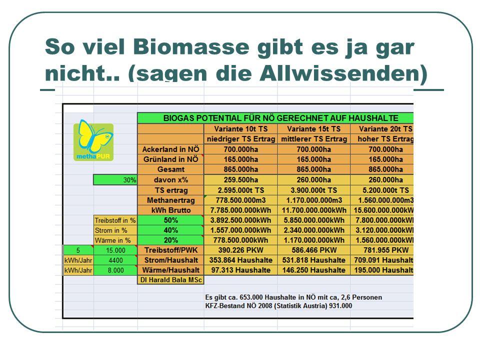 So viel Biomasse gibt es ja gar nicht.. (sagen die Allwissenden)