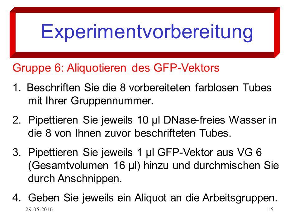 29.05.201615 Experimentvorbereitung Gruppe 6: Aliquotieren des GFP-Vektors 1.