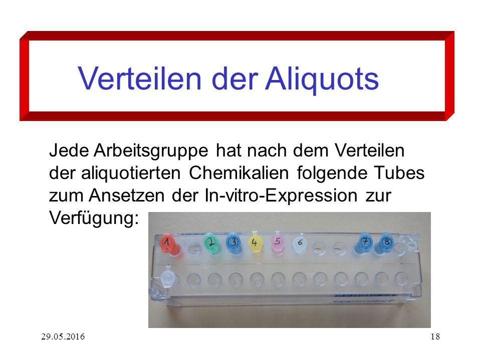 29.05.201618 Verteilen der Aliquots Jede Arbeitsgruppe hat nach dem Verteilen der aliquotierten Chemikalien folgende Tubes zum Ansetzen der In-vitro-Expression zur Verfügung: