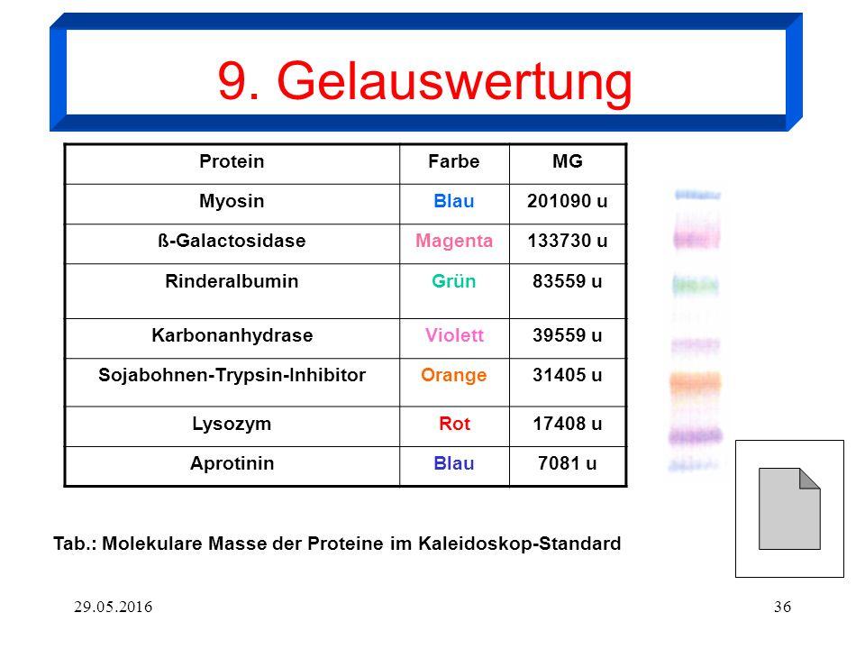 29.05.201636 ProteinFarbeMG MyosinBlau201090 u ß-GalactosidaseMagenta133730 u RinderalbuminGrün83559 u KarbonanhydraseViolett39559 u Sojabohnen-Trypsin-InhibitorOrange31405 u LysozymRot17408 u AprotininBlau7081 u Tab.: Molekulare Masse der Proteine im Kaleidoskop-Standard 9.