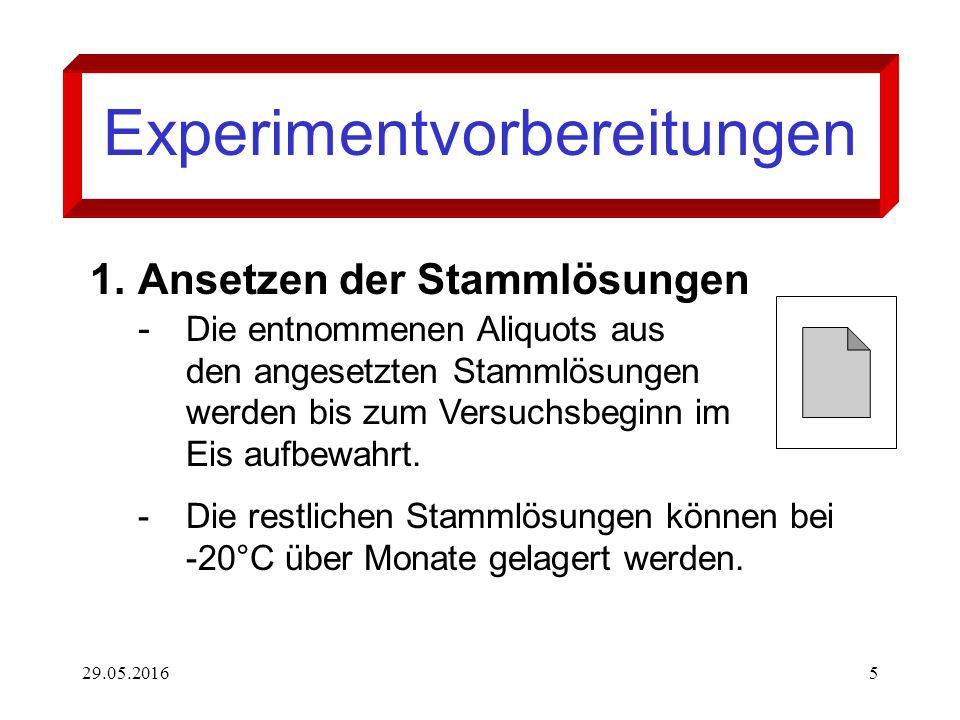 29.05.20165 Experimentvorbereitungen 1.Ansetzen der Stammlösungen - Die entnommenen Aliquots aus den angesetzten Stammlösungen werden bis zum Versuchsbeginn im Eis aufbewahrt.
