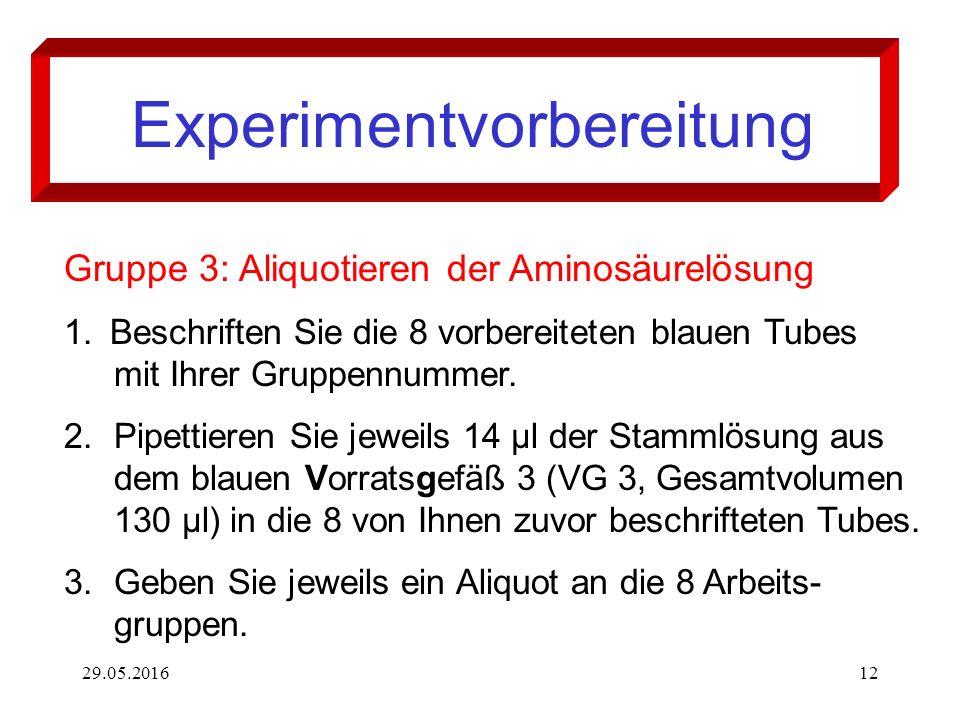 29.05.201612 Experimentvorbereitung Gruppe 3: Aliquotieren der Aminosäurelösung 1. Beschriften Sie die 8 vorbereiteten blauen Tubes mit Ihrer Gruppenn