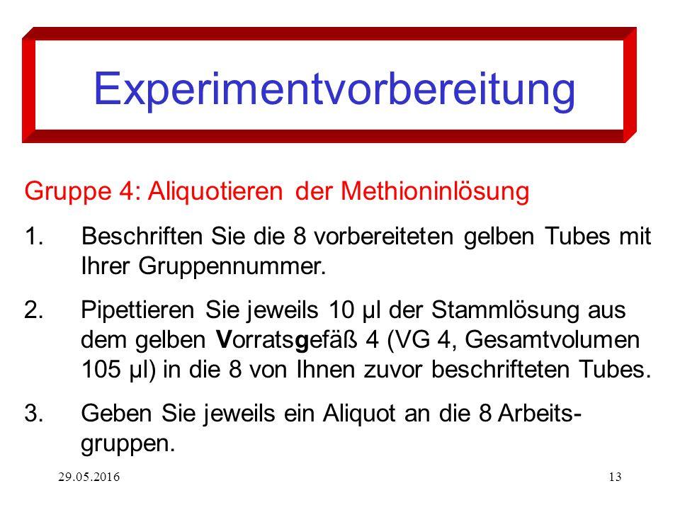 29.05.201613 Experimentvorbereitung Gruppe 4: Aliquotieren der Methioninlösung 1. Beschriften Sie die 8 vorbereiteten gelben Tubes mit Ihrer Gruppennu