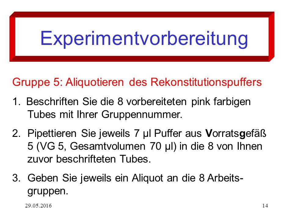 29.05.201614 Experimentvorbereitung Gruppe 5: Aliquotieren des Rekonstitutionspuffers 1. Beschriften Sie die 8 vorbereiteten pink farbigen Tubes mit I