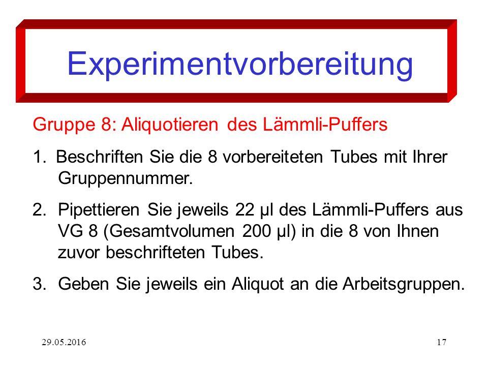29.05.201617 Experimentvorbereitung Gruppe 8: Aliquotieren des Lämmli-Puffers 1. Beschriften Sie die 8 vorbereiteten Tubes mit Ihrer Gruppennummer. 2.